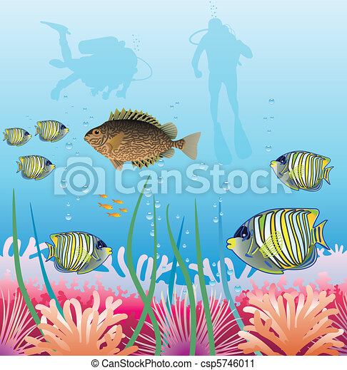 tropical fishes and scuba divers - csp5746011
