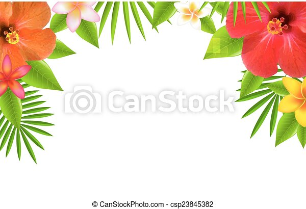 Tropical Flowers Border - csp23845382