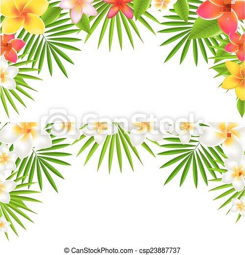Tropical Flowers Border Set - csp23887737