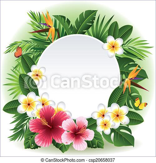 Tropical flowers - csp20658037