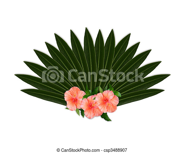 Tropical flowers hibiscus and leaves