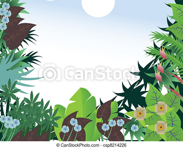 tropical forest background - csp8214226