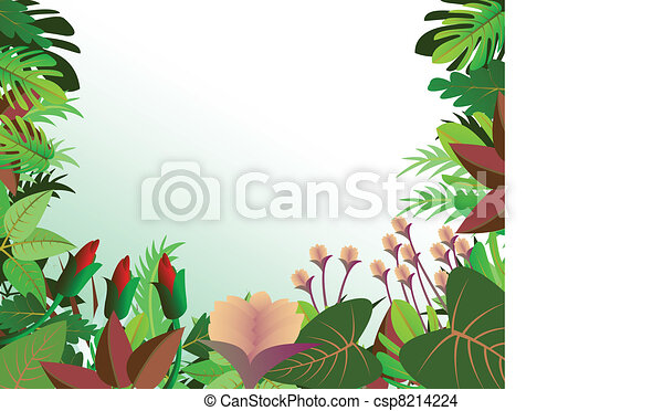 tropical forest background - csp8214224