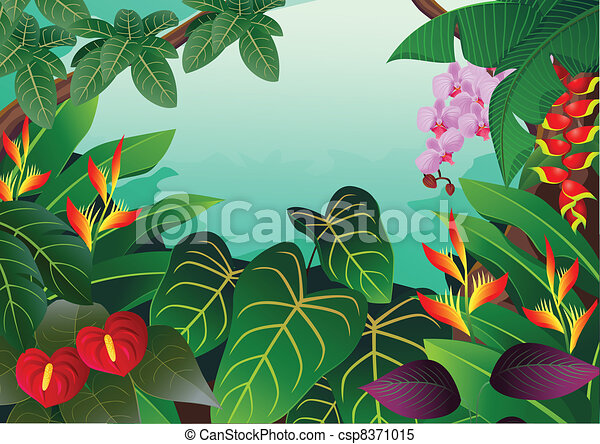 tropical forest background clipart vector search illustration rh canstockphoto com Amazon Rainforest Clip Art Tropical Rainforest Tree Clip Art