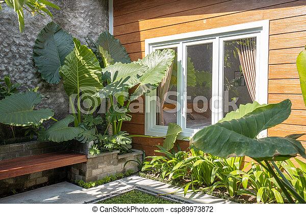 Tropical Garden backyard - csp89973872