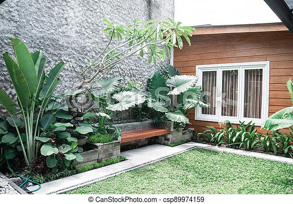 Tropical Garden backyard - csp89974159