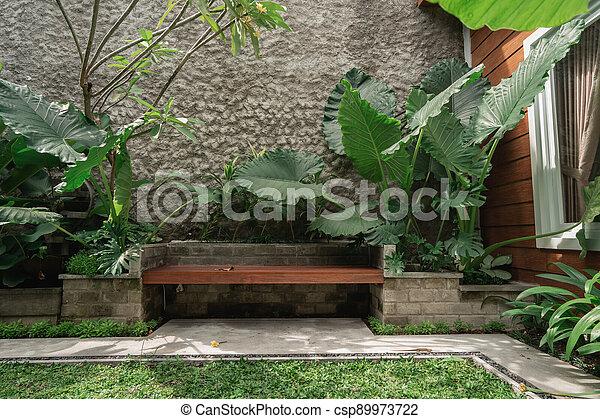 Tropical Garden backyard - csp89973722