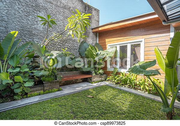 Tropical Garden backyard - csp89973825