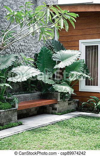 Tropical Garden backyard - csp89974242