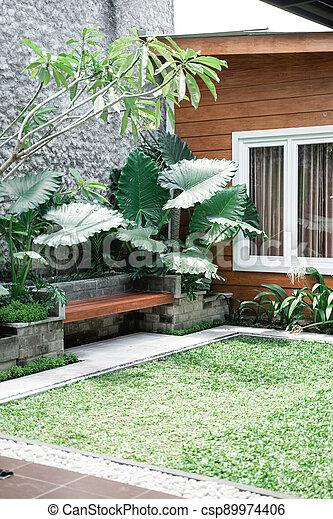 Tropical Garden backyard - csp89974406