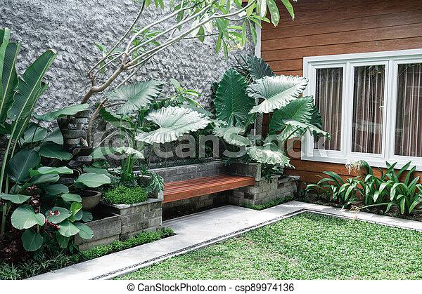 Tropical Garden backyard - csp89974136