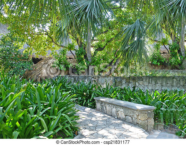 tropical garden - csp21831177