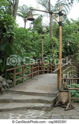 tropical garden - csp3600391