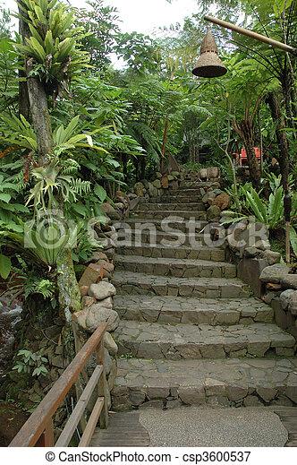 tropical garden - csp3600537