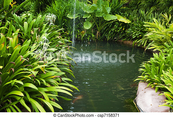 Tropical garden - csp7158371