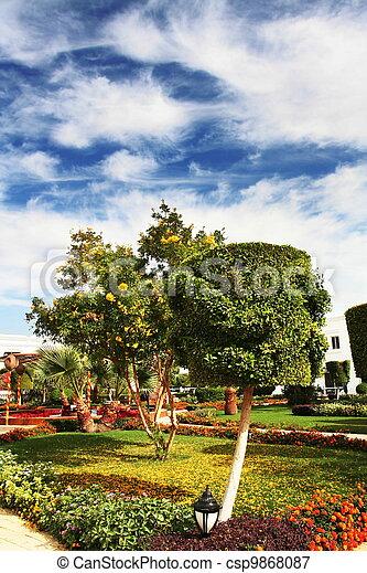 Tropical garden - csp9868087