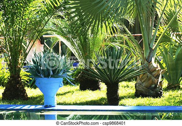 Tropical garden - csp9868401