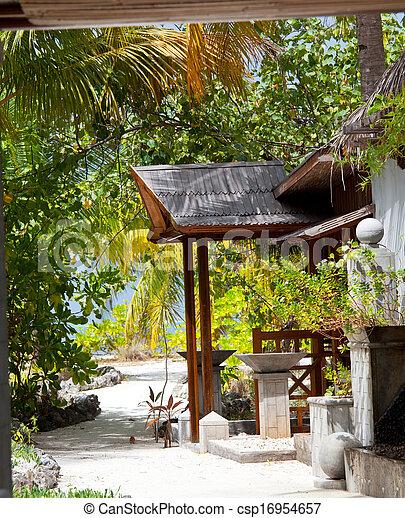 Tropical garden - csp16954657