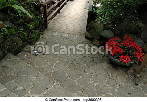 tropical garden - csp3600395