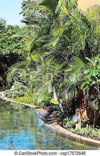 Tropical garden - csp17572648
