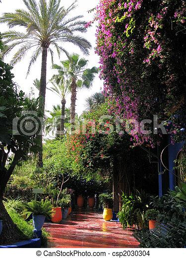 Tropical garden - csp2030304