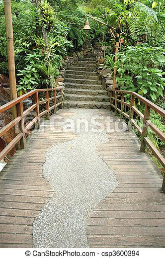 tropical garden - csp3600394
