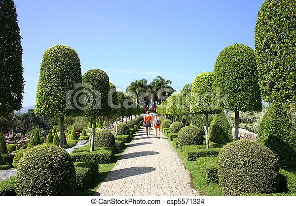Tropical Garden - csp5571324