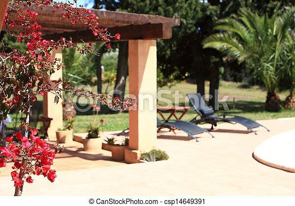 Tropical garden - csp14649391