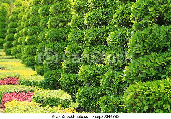 Tropical garden - csp20344792