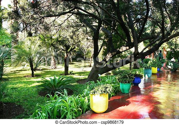 Tropical garden - csp9868179