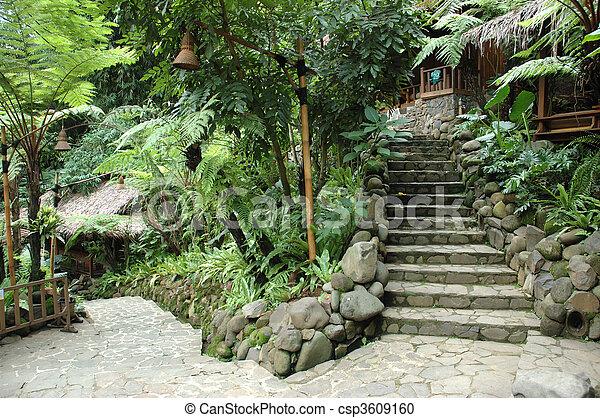 tropical garden - csp3609160
