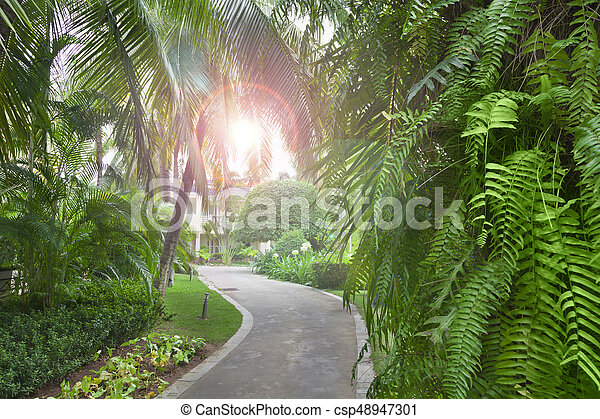 Tropical garden - csp48947301