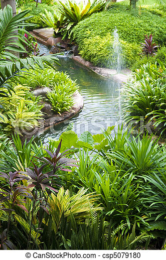 Tropical Garden - csp5079180