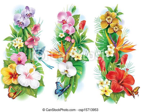 Un arreglo de flores tropicales y hojas - csp15713953