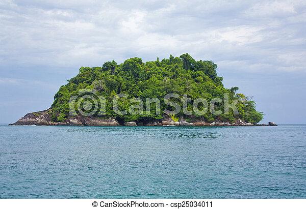 Tropical island on the sea - csp25034011