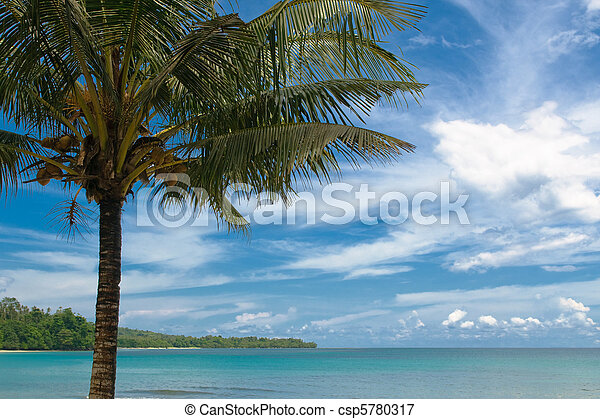 tropical island - sea, sky and palm trees - csp5780317