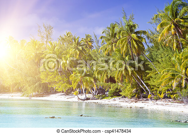 tropical island with palm trees in the sea - csp41478434