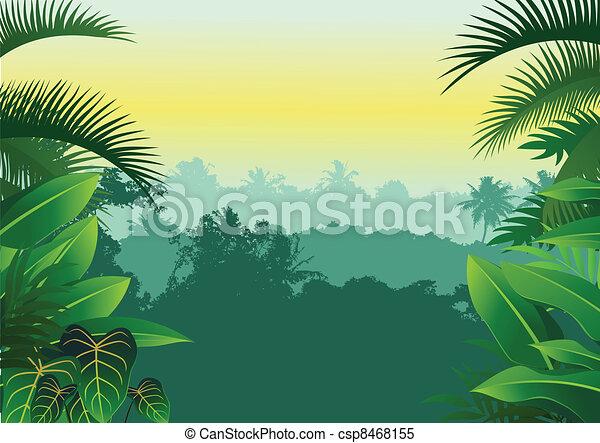 Tropical jungle - csp8468155