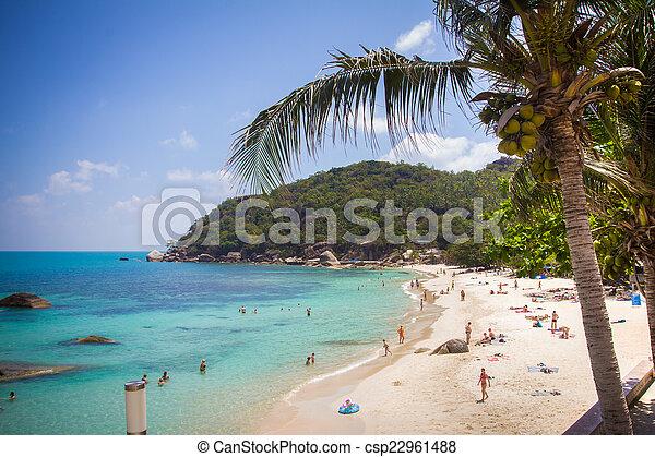 Playa tropical en Tailandia en Koh Samui - csp22961488