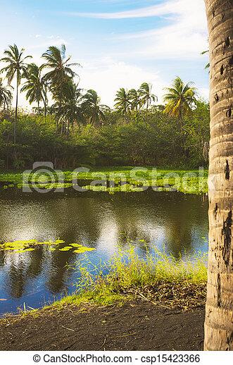 Tropical Lagoon - csp15423366
