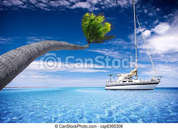 Tropical Lagoon - csp6365306