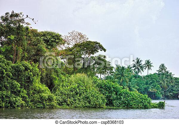 Tropical  Lagoon - csp8368103
