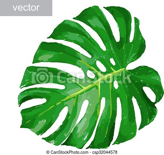 tropical leaf isolated tropical monstera leaf color isolated realistic illustration vector. Black Bedroom Furniture Sets. Home Design Ideas