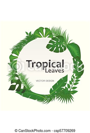 Tropical Leaves Background With White Round Sign With Text Space Frame Banner Suitable For Nature Concept Vacation And Canstock Download the free vector graphics to design your artworks which is related to sign, welcome, wood the welcome. https www canstockphoto com tropical leaves background with white 57709269 html