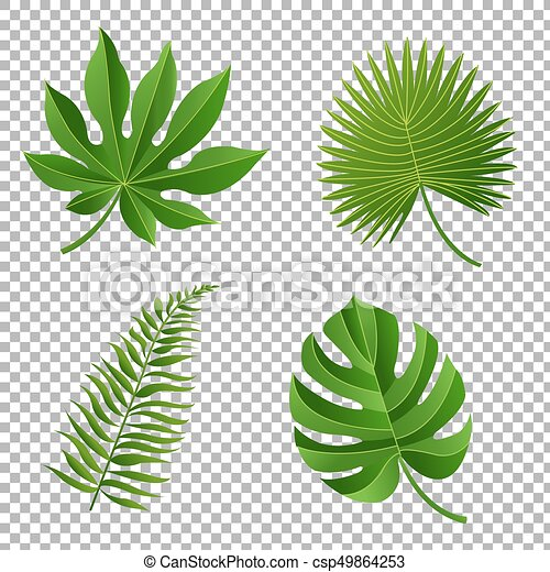 Tropical Leaves Vector Illustration With Gradient Mesh Canstock Tropical palm leaf illustration png image. https www canstockphoto com tropical leaves 49864253 html