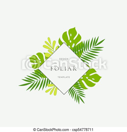Tropical Leaves Fashion Sign Card Or Logo Template Abstract Green Monstera Foliage With Rhombus Border And Classy Typography Bright Colors Isolated