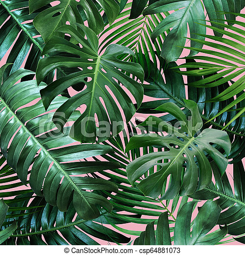 Tropical Leaves On Pink Background Canstock Blue, red, and pink swiss cheese leaves print textile. https www canstockphoto com tropical leaves on pink background 64881073 html