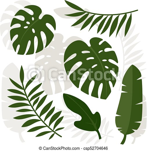 Tropical Leaves Vector Illustration Eps 10 Canstock Most relevant best selling latest uploads. https www canstockphoto com tropical leaves vector illustration 52704646 html