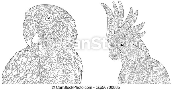 Macaw Coloring Page   Bird coloring pages, Coloring pages, Macaw   241x450
