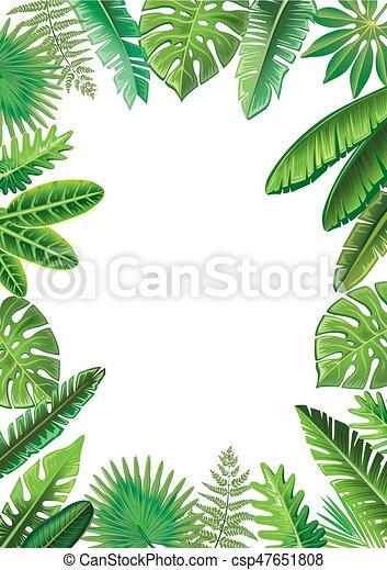 Frame de hojas tropicales - csp47651808